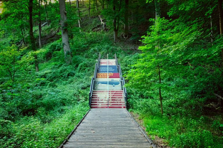 Stair at Old Forge trail